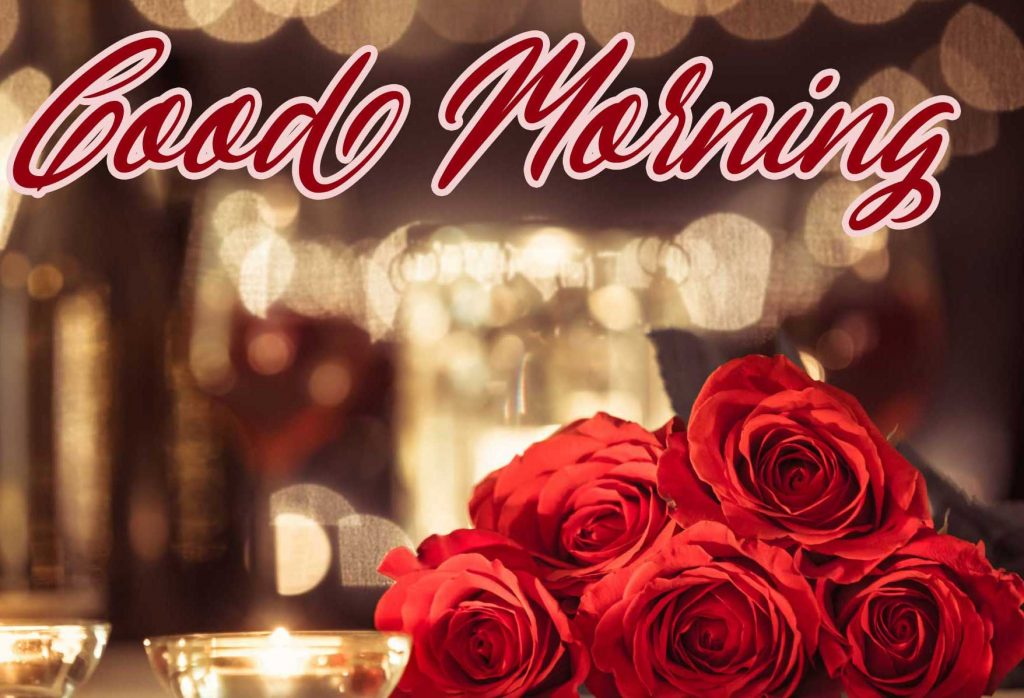 Best Red Rose Good Morning Images Pic Download Free
