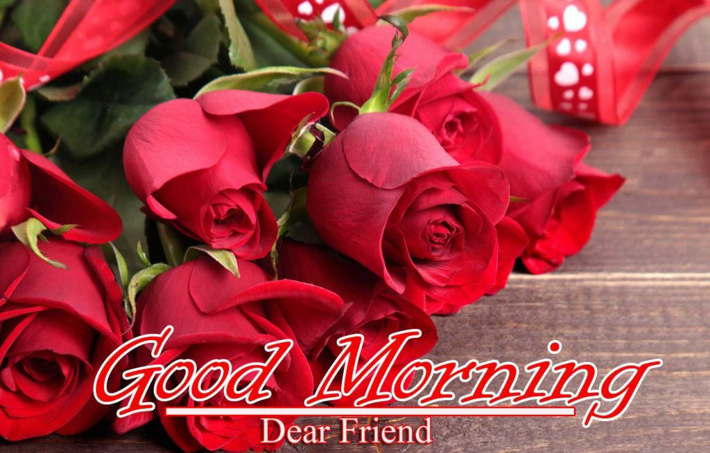 Best Red Rose Good Morning Images Pics for Wife