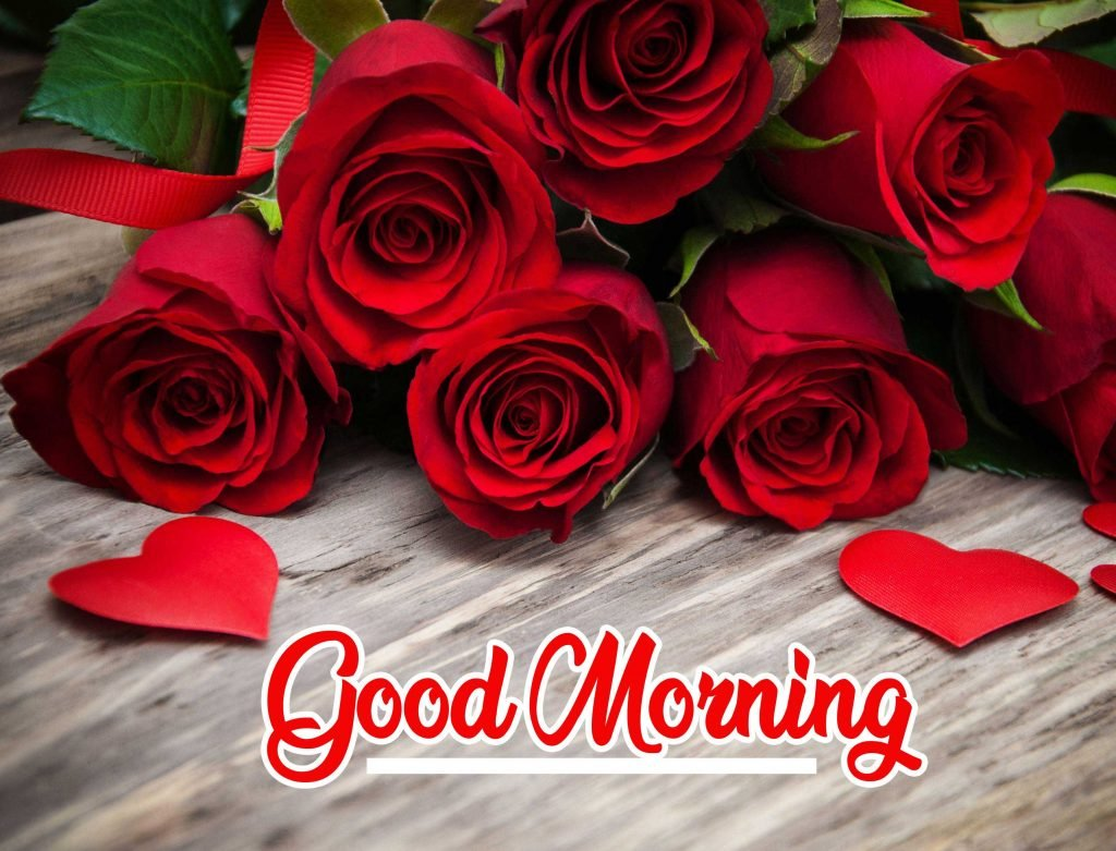 Best Red Rose Good Morning Images Pic Wallpaper free