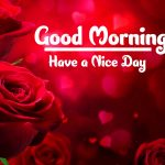 Red Rose Good Morning Images pictures hd