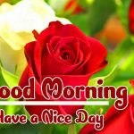 251+ Red Rose Good Morning Images HD For Girlfriend