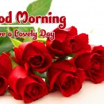 Red Rose Good Morning Images pictures pics hd