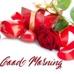 Red Rose Wishes Images pictures hd download