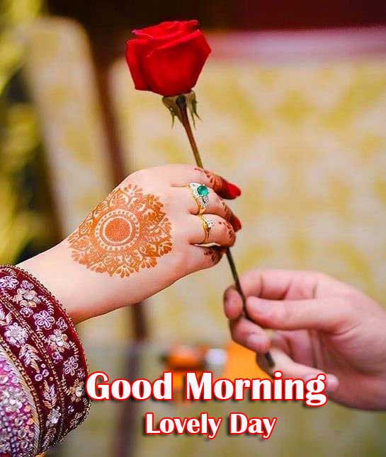 Very Romantic Couple Good Morning Images With Red Rose
