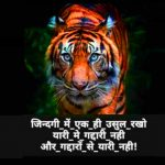 Royal Attitude Whatsapp Dp Images pics download