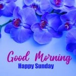 Sunday Good Morning Images pictures hd download