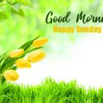 Sunday Good Morning Images pictures photo hd