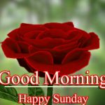 Sunday Good Morning Wallpaper