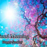 Sunday Good Morning Images pictures for hd