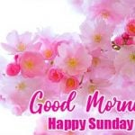 Sunday Good Morning Images photo hd download