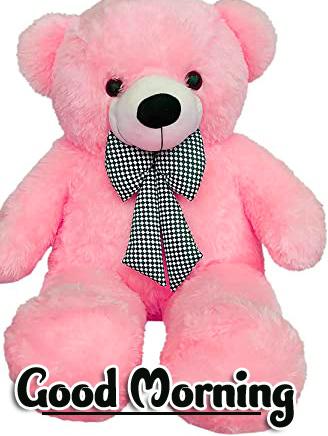 Teddy Bear Good Morning Images