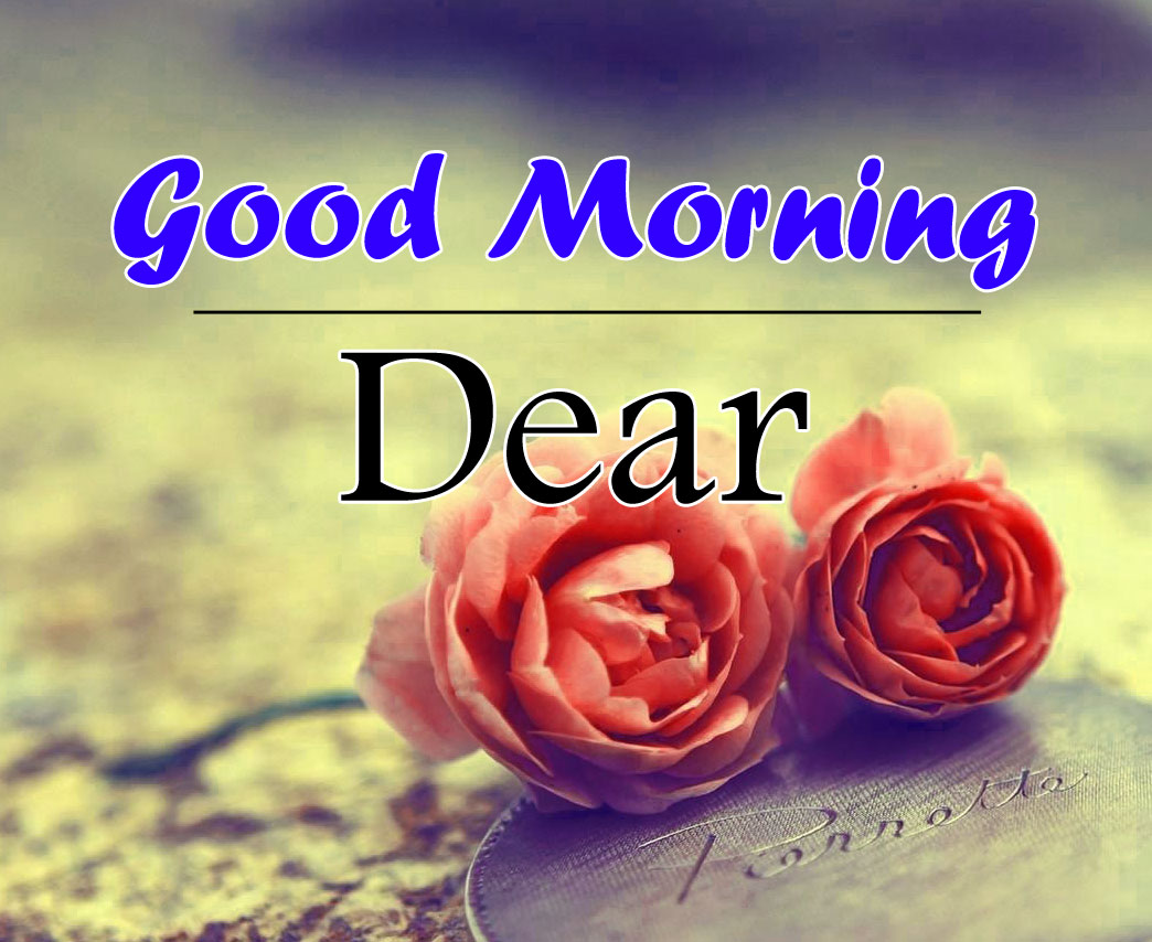 Top Good Morning Pics Wallpaper for Wife