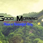 Top Wallpaper Nature Good Morning