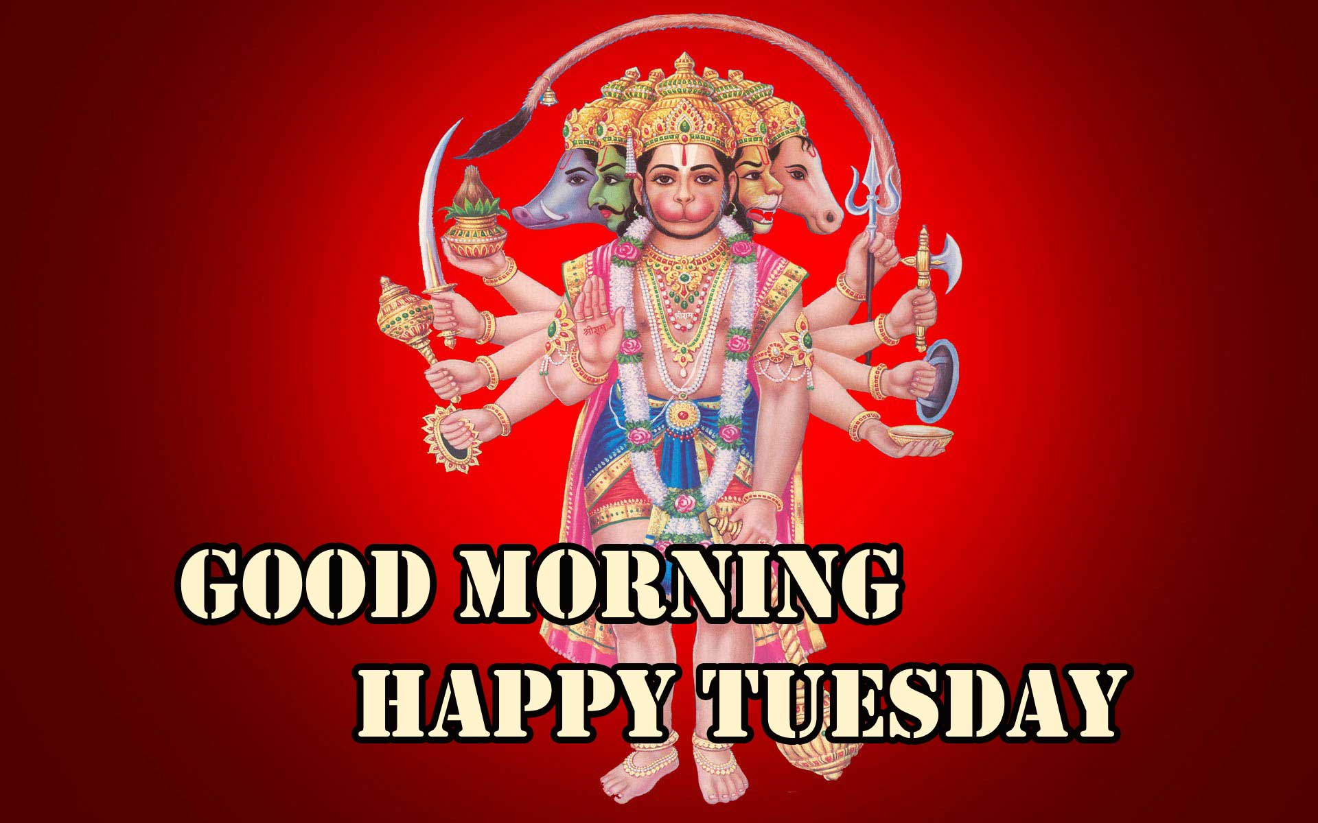 547+ Dear Friend Download Tuesday Good Morning Images { Best }
