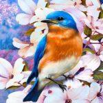 Unique Profile Images pictures free hd