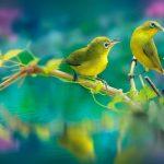 Unique Profile Images photo free hd