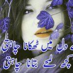 Urdu Poetry Images wallpaper photo free hd