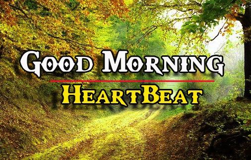 459+ Wonderful Good Morning Photos HD Wallpaper Free Download