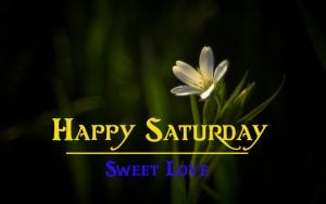 best Happy Saturday Good Morning Images