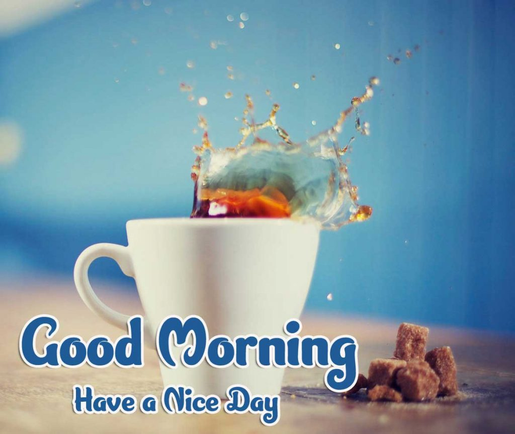 Good Morning Pics Wallpaper Download