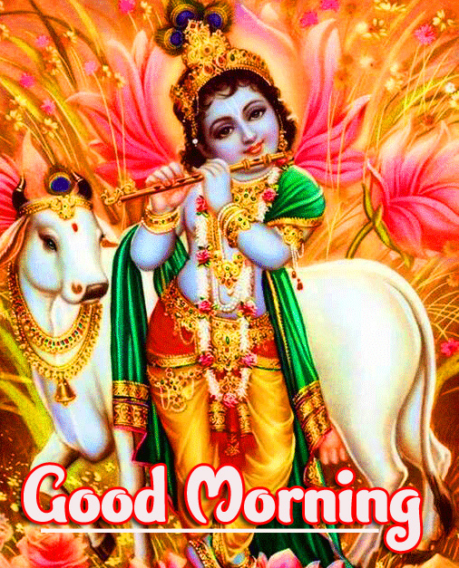 Bal Krishna Best God Good Morning Images Download