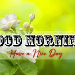 d Good Morning Images Download Free