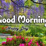 Attractive Good Morning Images pics hd