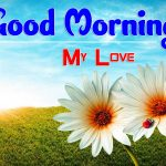 Attractive Good Morning Images photo for hd