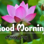 Attractive Good Morning Images photo pics free download