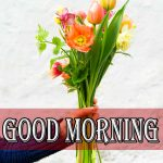 Beautiful Flower Good Morning Wallpaper for Girlfriend