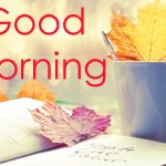 Beautiful Free Good Mornign Images Download