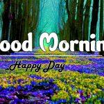 Beautiful Free Good Morning Images wallpaper download