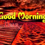 Beautiful Free Good Morning Images photo for download