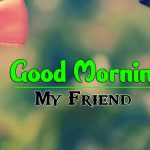 Beautiful Free Good Morning Images pictures hd