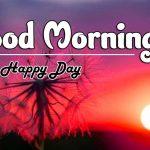 Beautiful Free Good Morning Images pics hd