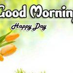 Beautiful Free Good Morning Images wallpaper photo download