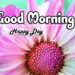 Beautiful Free Good Morning Images photo download