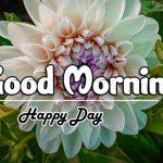 Beautiful Free Good Morning Images pics photo hd