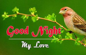 Beautiful Good Night Images Pics