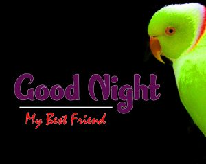 Beautiful Good Night Images Pictures
