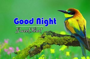 Beautiful Good Night Photo PIcs