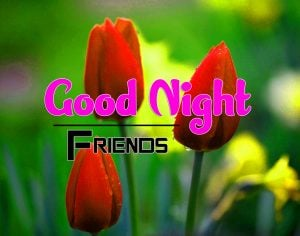 Beautiful Good Night Pics Images