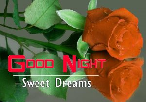 Beautiful Good Night Wallpaper Photo