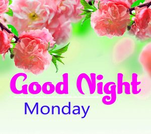 Beautiful good night monday images