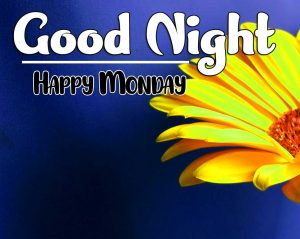 Beautiful good night monday images Photo Download