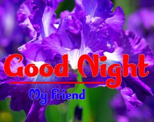 Beautiful good night monday images Pics Download Free