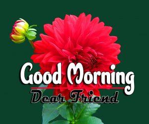Best Good Morning Download Pics