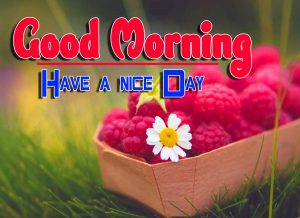 Best Good Morning For Facebook Images Photo
