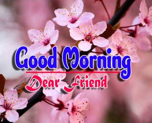 Best Good Morning For Facebook Pics Images