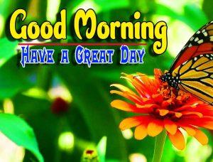Best Good Morning For Whatsapp Hd